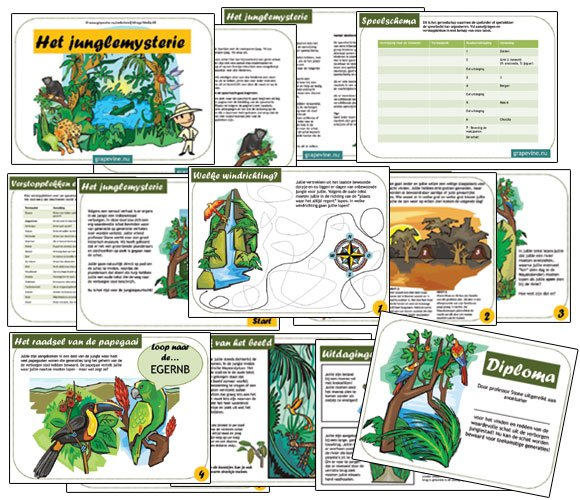 Verrassend Jungle speurtocht: het junglemysterie - SPEURTOCHT KINDERFEESTJE NT-17